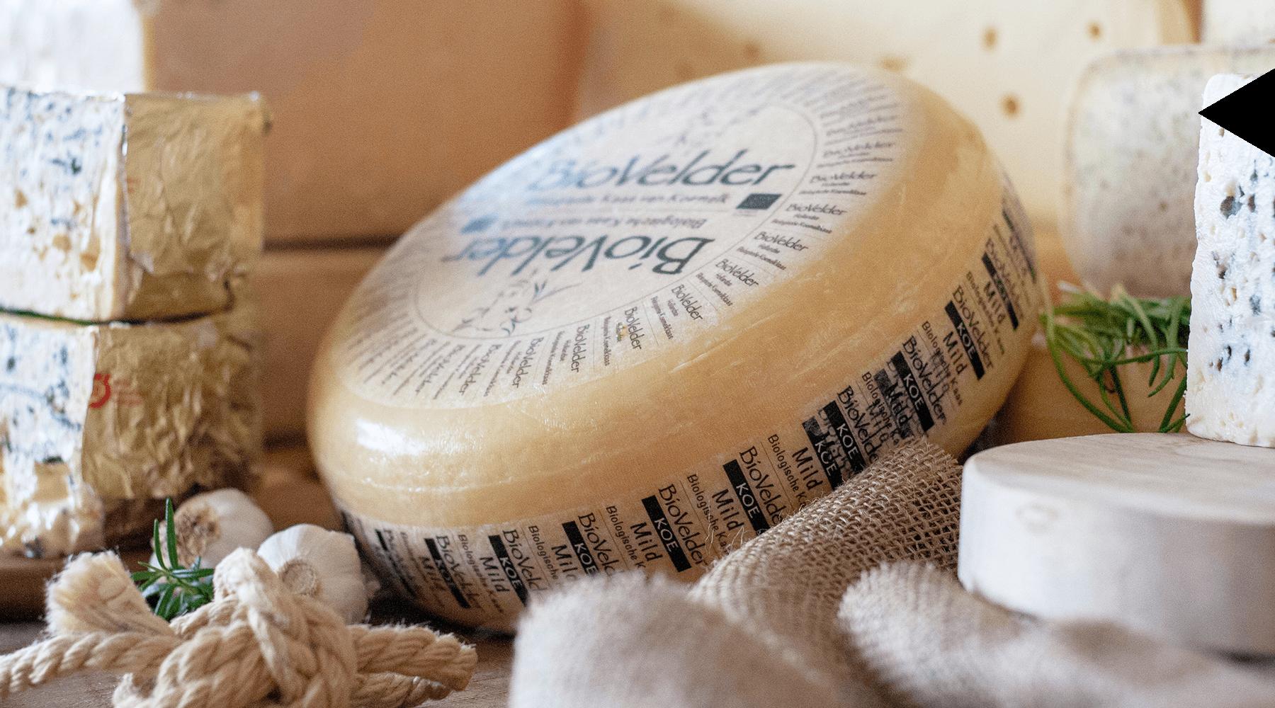 MAAZ Cheese assortiment biologische kaas