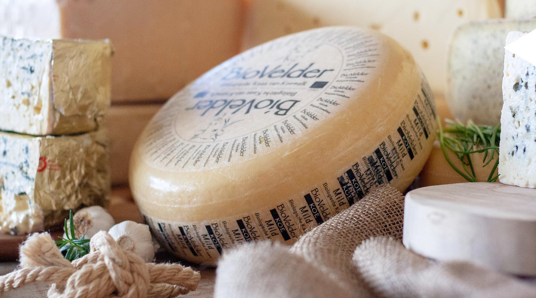 MAAZ Cheese biologische kaas