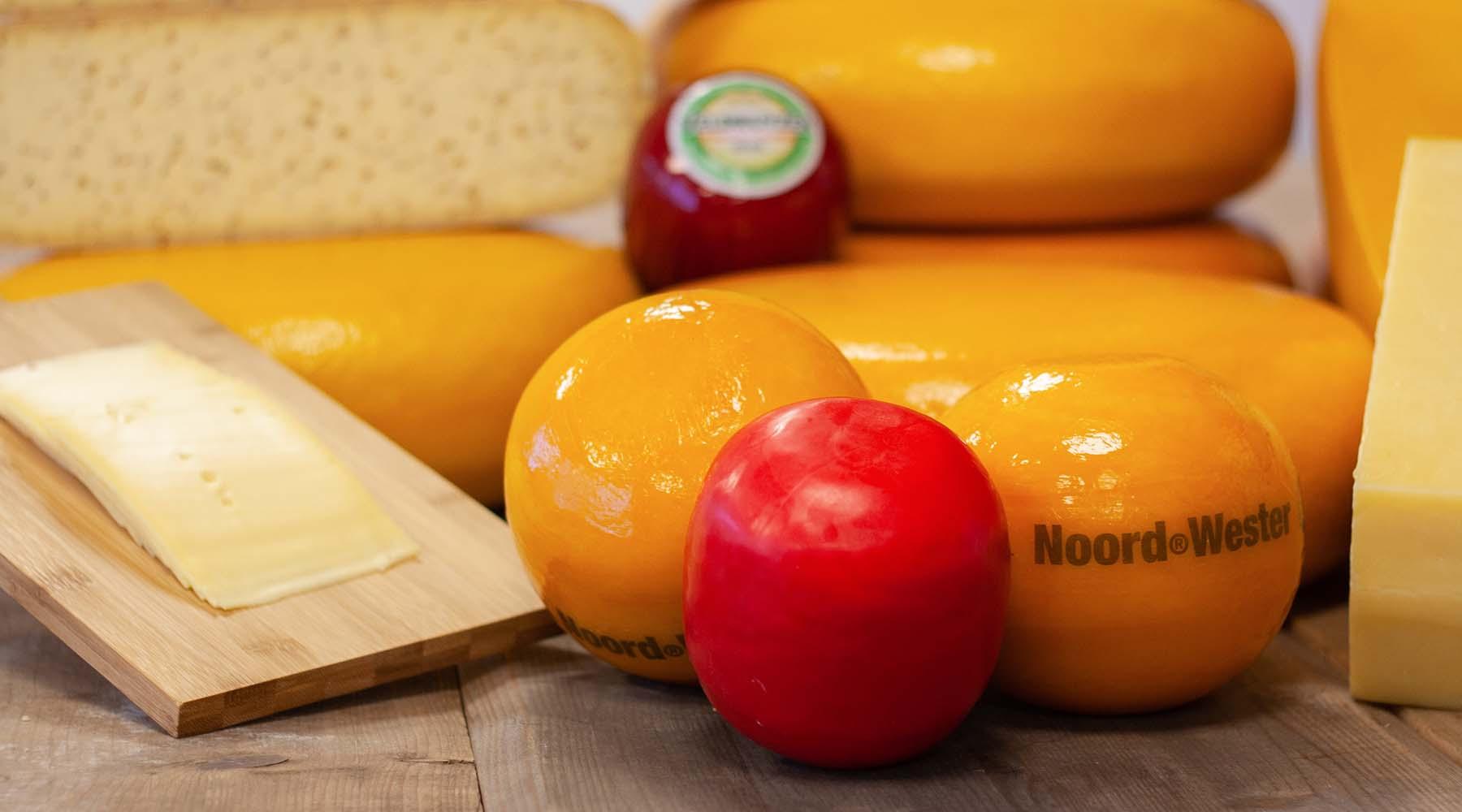 MAAZ Cheese assortiment Goudse kaas