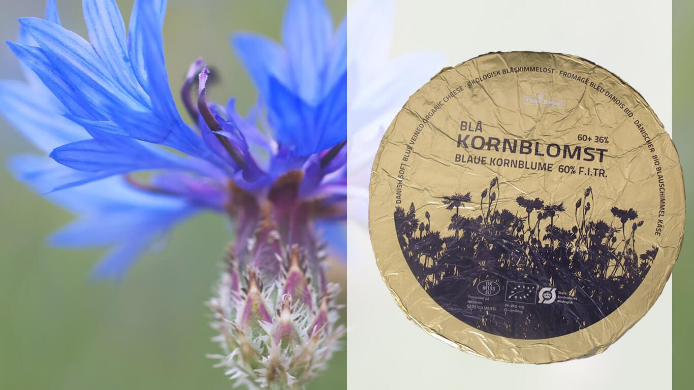 MAAZ Cheese & More Kornblomst Blauw Bio